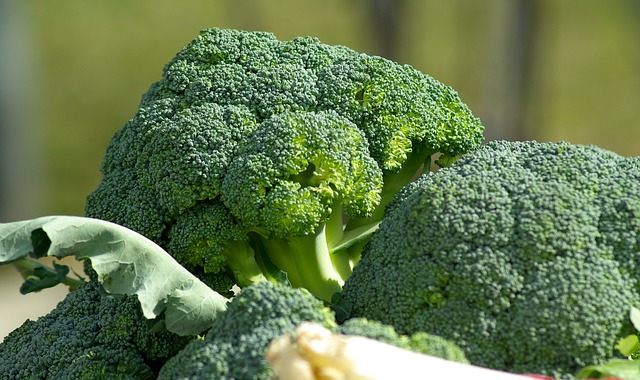 Boosting Immune System with Food