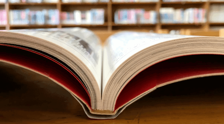 8 Simple Methods: How to Get Back into Reading