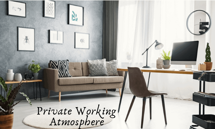 Private Working Atmosphere working remotely pros and cons