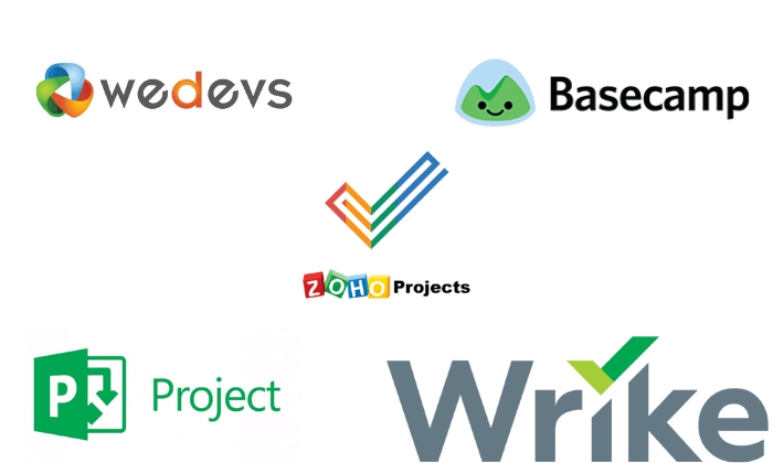 Examples of Project Management Software