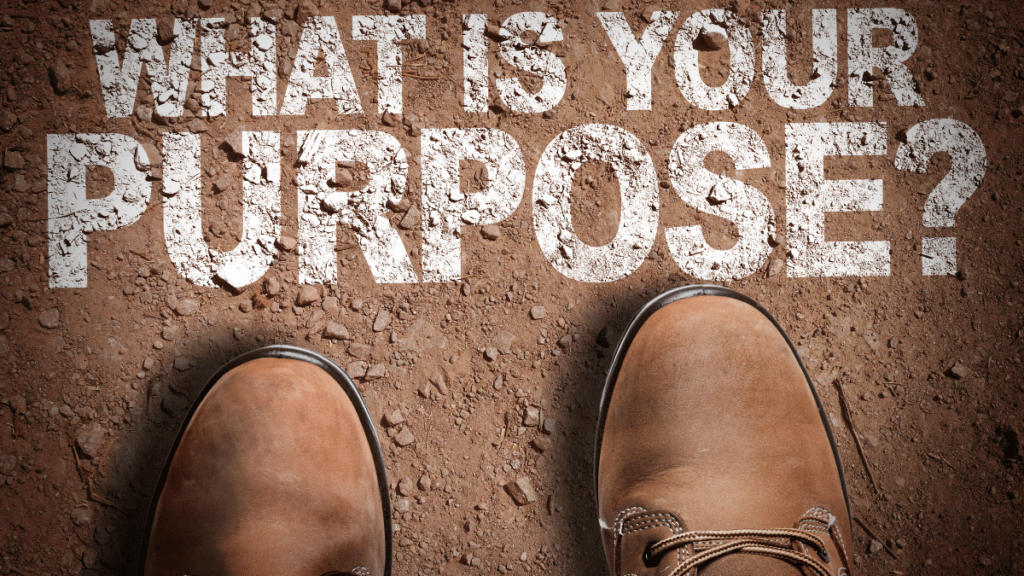 purpose to your life
