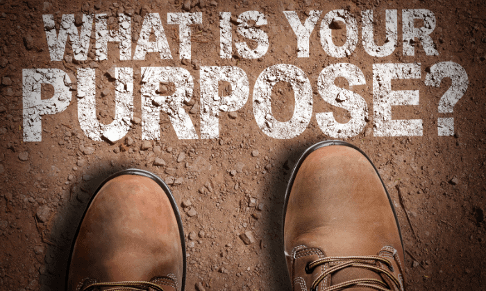 Figure Out the Purpose of Your Life