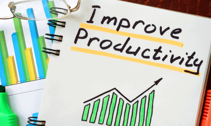 Improves Productivity of the Business